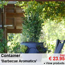Container 'Barbecue Aromatics' - from 23.95 €
