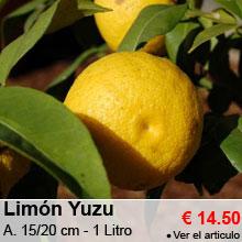 Lim�n Yuzu - 14.50 €