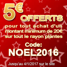 Code promotionnel : NOEL2016 - J'en profite !