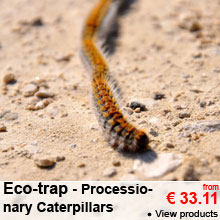 Processionary Caterpillars - Eco-trap - From 33.11 €