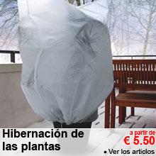 Hibernación de las plantas - a partir de 5.50 €