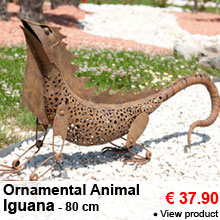 Ornamental Animal - Iguana - 37.90 €