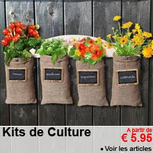 Kits de Culture - a partir de 5.95 €