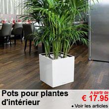 Pots pour plantes d'intérieur
