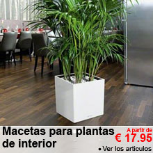 Macetas para plantas de interior