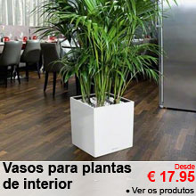 Vasos para plantas de interior