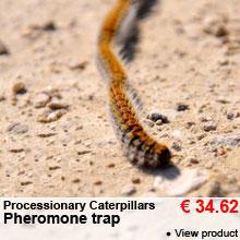 Processionary Caterpillars - Pheromone trap - 34.62 €