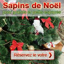 Réservez votre sapin de Noël