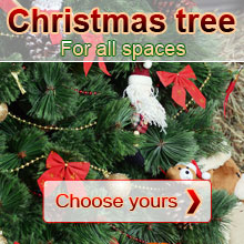 Choose your Christmas tree