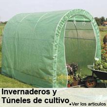 Invernaderos y T�neles de cultivo
