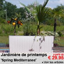 Jardinière de printemps 'Spring Mediterranea' - a partir de 29.95 €