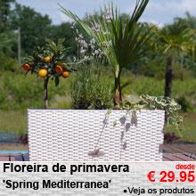 Floreira de primavera 'Spring Mediterranea' - desde 29.95 €