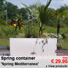 Spring container 'Spring Mediterranea' - from 29.95 €