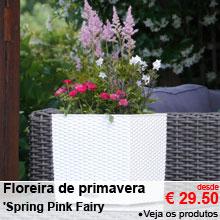 Floreira de primavera 'Spring Pink Fairy' - desde 29.50 €