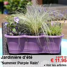 Jardinière d'été 'Summer Purple Rain' - a partir de 11.95 €