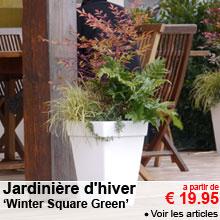 Jardinière d'hiver 'Winter Square Green' - a partir de 19.95 €