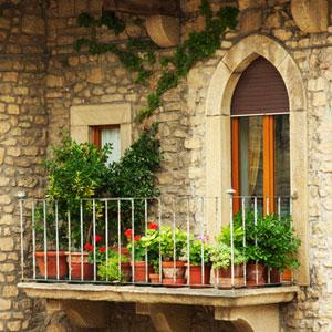 les plantes de balcon