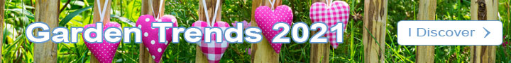 Garden Trends 2019