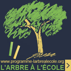 Programme l'arbre à l'école