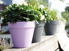Jardinières et pots - Elho - Gamme Loft