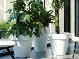 Jardineras y macetas - Elho - Gama Pure