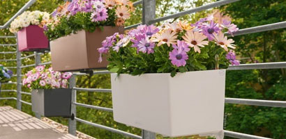 Pots and Planters - Lechuza
