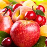 Árvores de fruto
