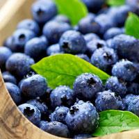 Frutas selvagens comestíveis