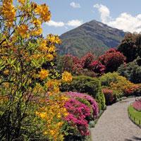 Jardim de montanha