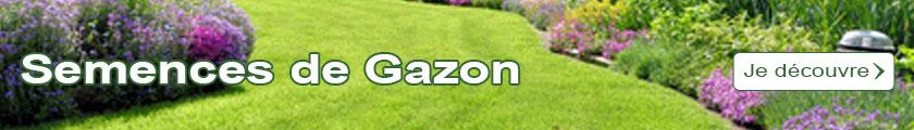 Je découvre le catalogue des Semences de Gazon