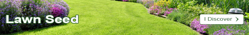 Discover the catalogue of Lawn Seed