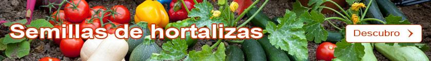 Descubro el Catálogo de Semillas de hortalizas