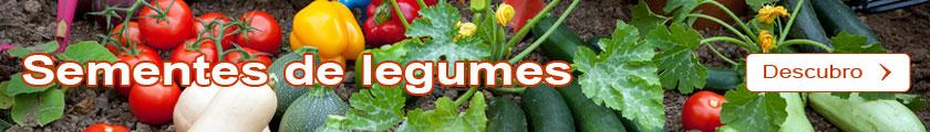 Descubro a seleção das Sementes de legumes