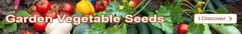 Discover the Garden vegetable seeds Catalogue