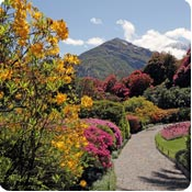 Jardines en zona de montana