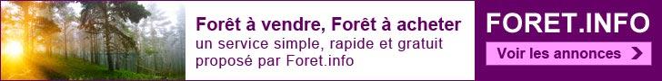 Voir les annonces : Forêt à vendre, Forêt à acheter