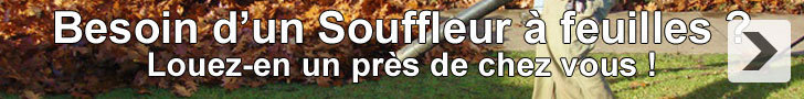Louez un souffleur à feuilles