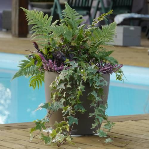 Jardini re d 39 hiver 39 winter pinky moka 39 vente jardini re for Jardiniere balcon hiver