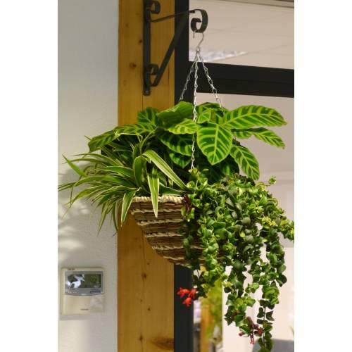 Jardini re d 39 int rieur 39 indoor jungle 39 vente jardini re for Jardiniere interieur