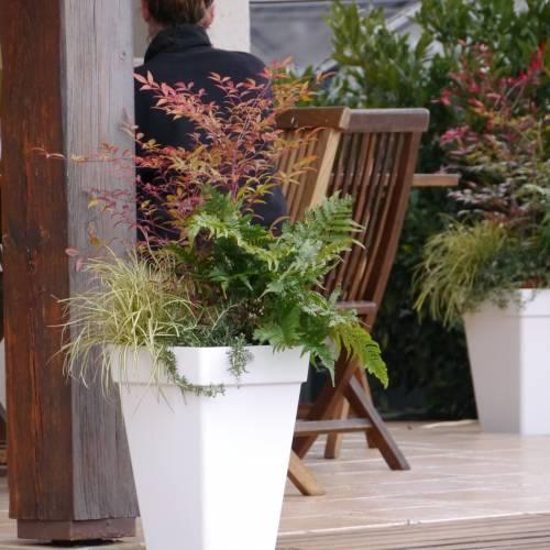 Jardini re d 39 hiver 39 winter square green 39 vente for Jardiniere d hiver