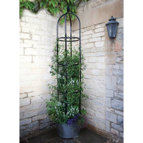 Ob lisque pour plantes grimpantes york 220 cm vente ob lisque pour plantes grimpantes york - Support pour plante grimpante ...