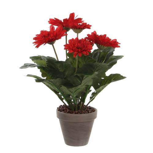 Plante artificielle gerbera rouge mica vente plante for Plante rouge