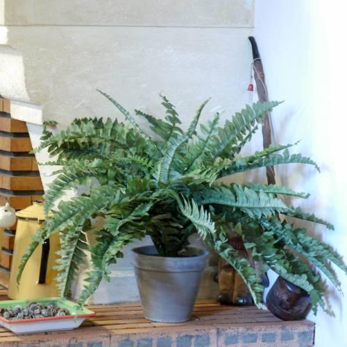 Plante artificielle foug re de boston mica vente for Site de vente de plantes