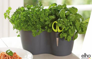 Brussels Herbs Duo - Anthracite - Elho