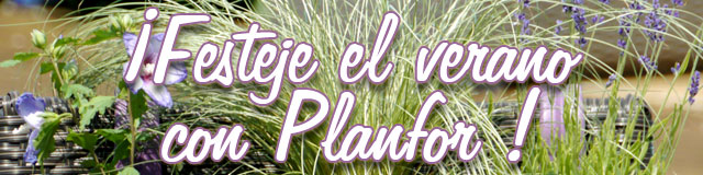 ¡Festeje el verano con Planfor !