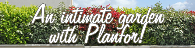 An intimate garden with Planfor!