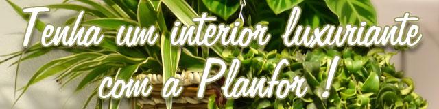 Tenha um interior luxuriante com a Planfor !