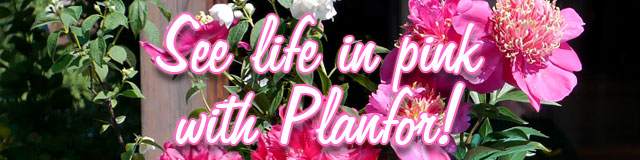 See life in pink with Planfor!