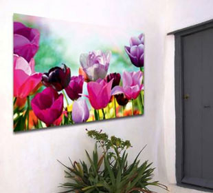 Outdoor Canvas Wall Art - Tulip