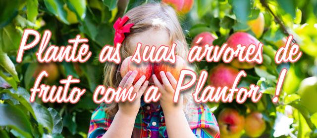 Plante as suas árvores de fruto com a Planfor !